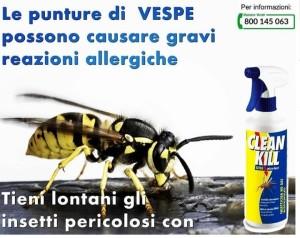 Clean Kill Extra Gt contro le vespe
