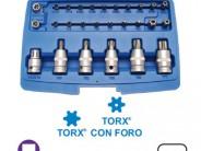 Cassetta Torx 27 pezzi Fermec Bgs 5101