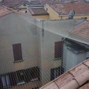 piccioni-allontanamento-rete-antivolatile2
